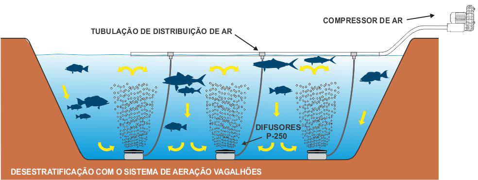 sistema-aeracao-de-lagoas